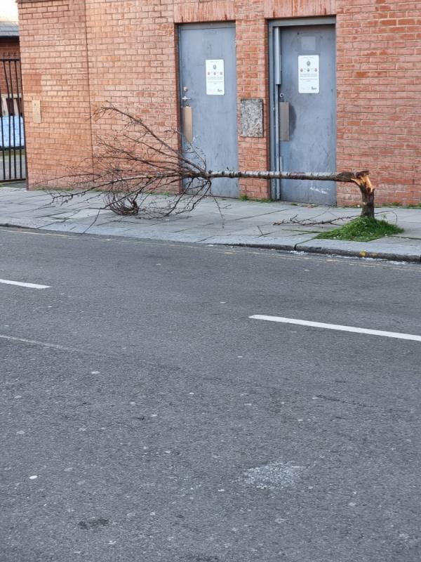 Tree fallen over on pavement -154 The Broadway, Southall UB1 1NN, UK