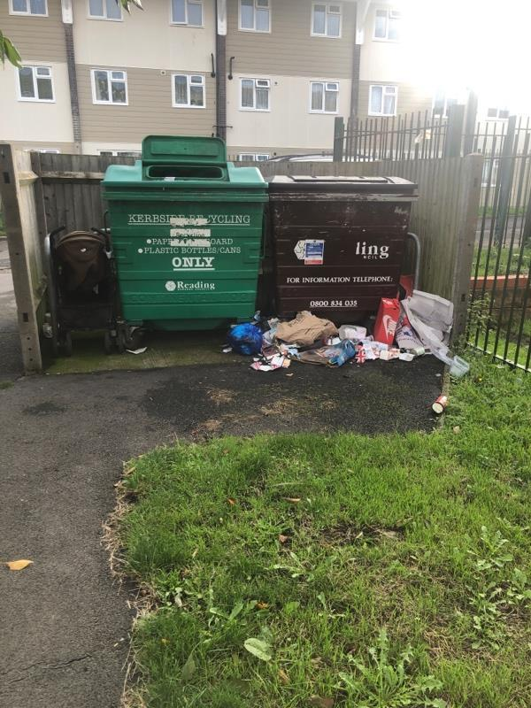 Dumped rubbish round bin area-8 Bamburgh Close, Reading, RG2 7UD