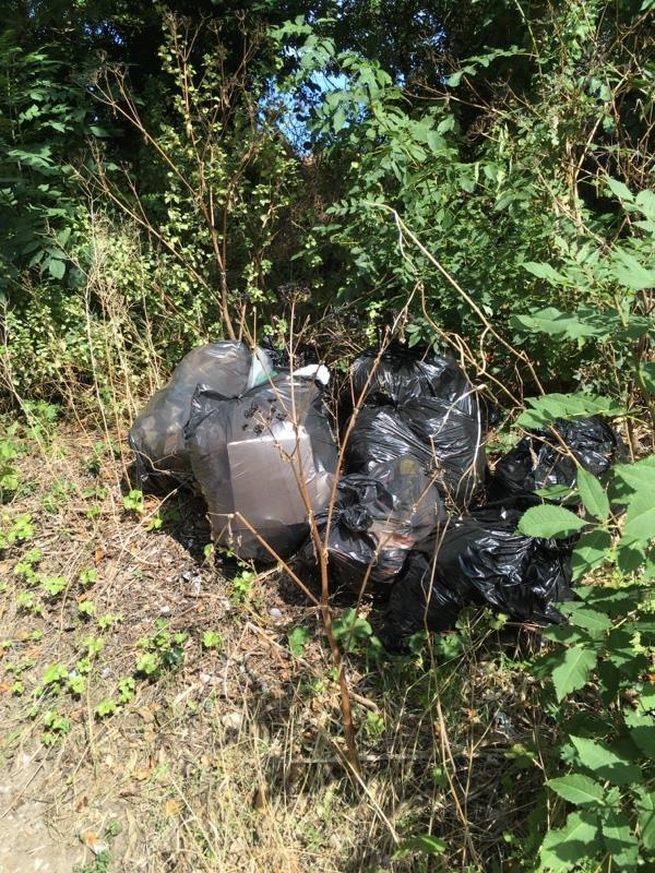 Fly tipping both sides of Southcote farm lane. Foxes are ripping open the bags and the rubbish is going everywhere.  image 1-2 Cowper Way, Reading, RG30 3EG