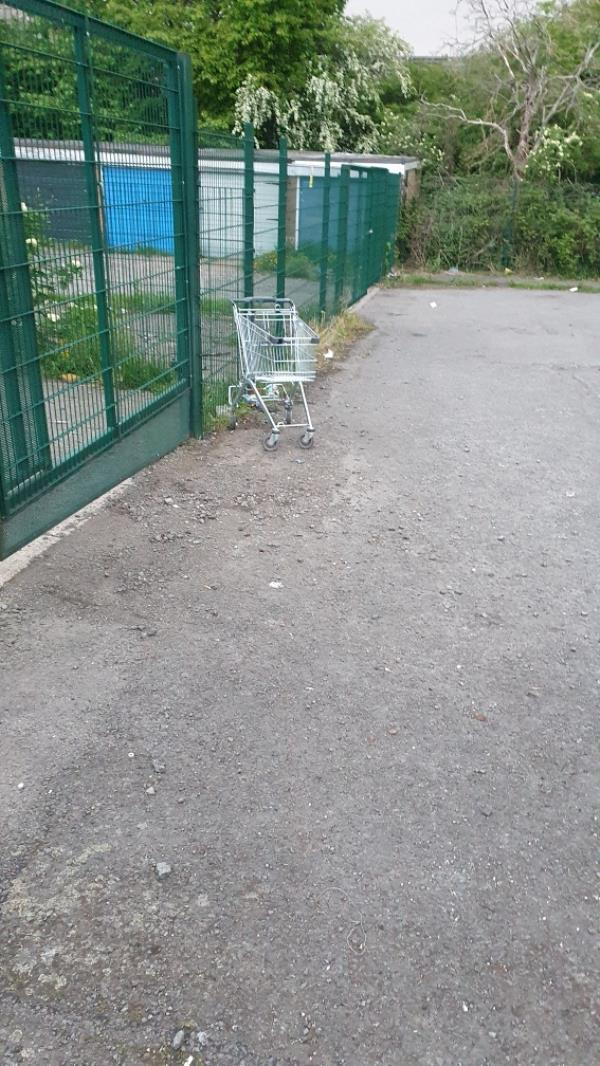 Trolleys stolen from local Lidl store and abandoned on street on a regular basis. Same household. -87 Woodgreen Road, Leicester, LE4 9UD