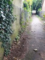 This is the second time I have reported issue and still not been dealt with.  The alleyway is very dirty and needs a full sweep, vegetation cut back and litter clearing.  Please can the council prioritise this. image 2-21 Fircroft Close, Reading, RG31 6LJ
