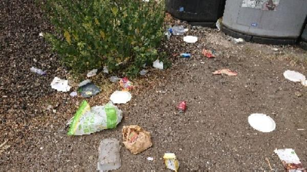 Litter bin over fall now been emptied  image 2-40 Liebenrood Road, Reading, RG30 2EB