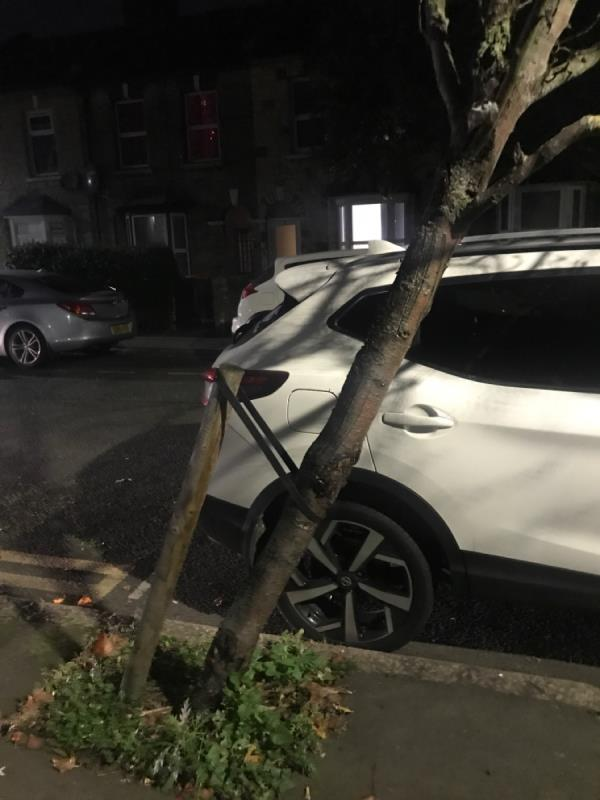 Tree leaning for months. Reported months ago but still no action. Tree needs at very least a new support strap. -9 Moore Walk, London, E7 0HY