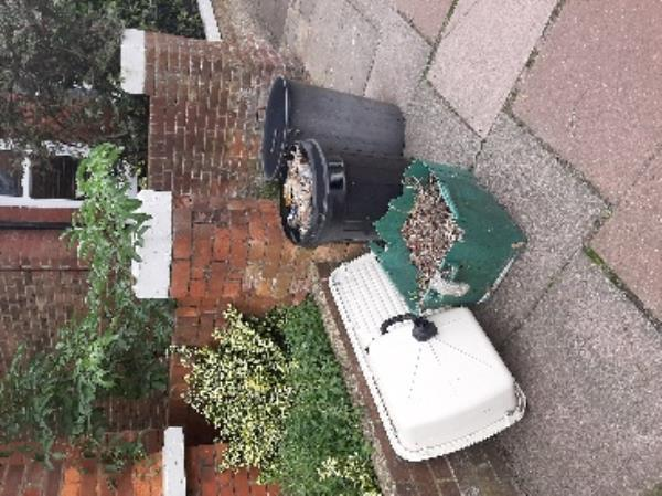 SEESL EBC Zone2 JN   please could you remove the items left outside 28 Greys Road old style dustbins garden rubble kitchen sink  Many Thanks Jo NF Advisor -30 Greys Road, Eastbourne, BN20 8AZ