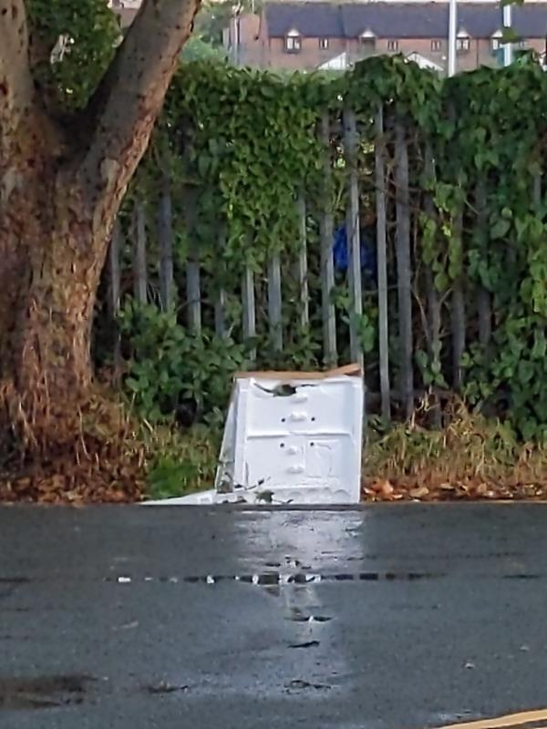 Boxes and Litter-37 Damask Crescent, Canning Town, E16 4NN