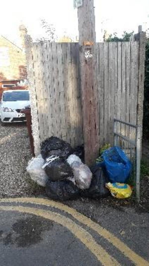 Fly tipping x 10 bags of household and garden waste.-27 South Street, Reading, RG4 8HY