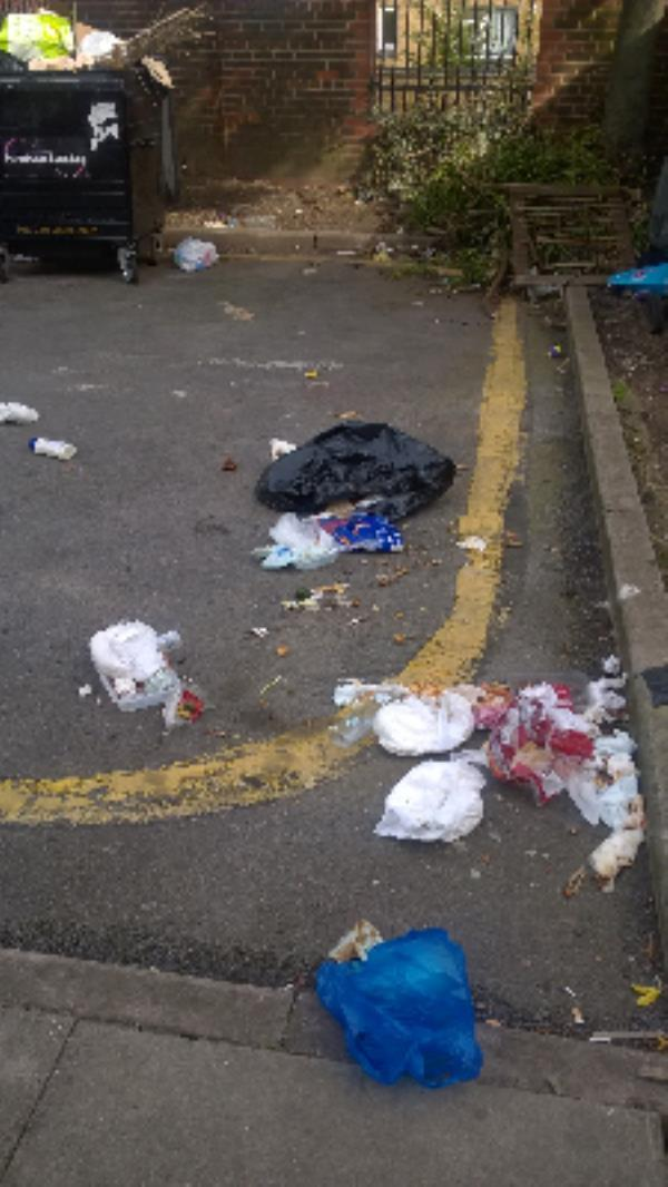 Bin Store area rear 11-27 Queens Terrace & 241- 247 Queens Rd E13 : Litter, ripped bags, soiled nappies-205 Queens Road, London, E13 9AN