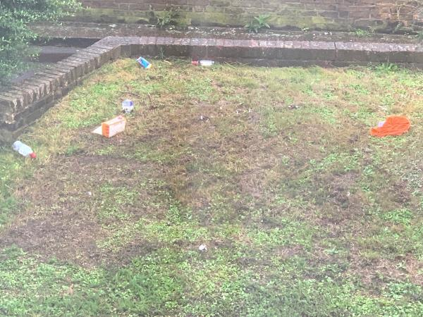 Consumer waste left on the grass-74 Libra Road, London, E13 0LF