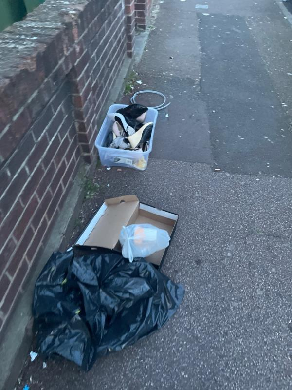 Rubbish app  image 2-71a Shelley Avenue, Manor Park, E12 6PX