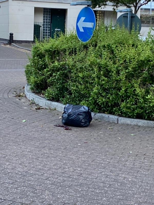 Black sack in middle of roundabout -11 Gatcombe Road, London, E16 1TA