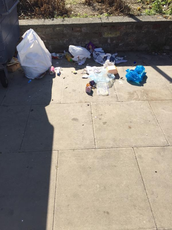 Litter near bins-2A Church St, London E15 3HX, UK