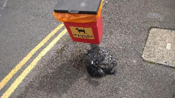 Flytipped bag of dog poo no evidence taken -12 Totnes Road, Reading, RG2 7NY