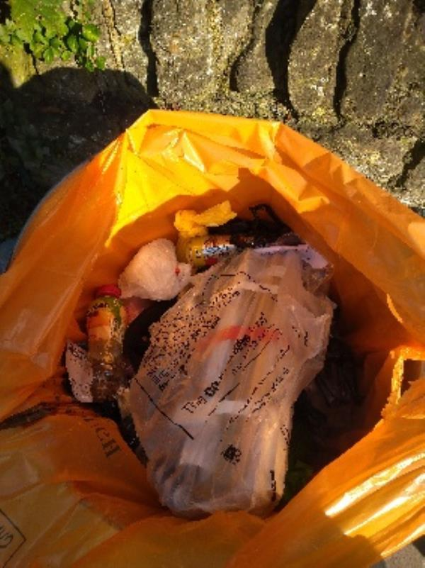 Bin full of flytipped items on going problem no evidence /taken -4 Armour Road, Reading, RG31 6HT