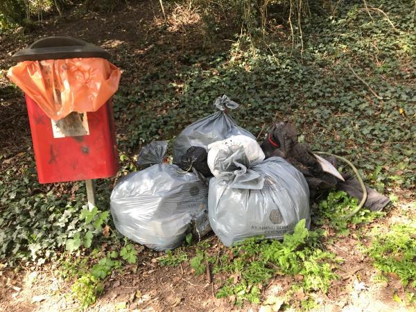 More historic fly tipping and litter (collected and bagged) removed from bushes - left Burghfield Road dog waste bin-114 Burghfield Rd, Reading RG30 3ND, UK