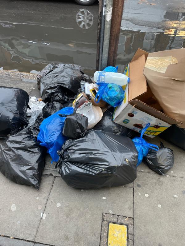 Rubbish  image 1-31a Plashet Grove, East Ham, E6 1AD