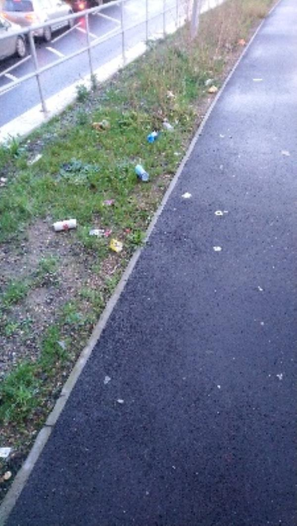 Litter by footpath and cycle path-215 Cardiff Road, Reading, RG1 8FN