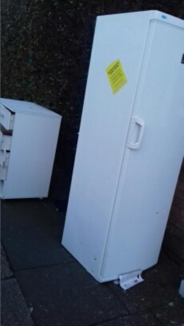 A chest drawer and a fridge freezer dumped outside 58 Egham Road -17 Applewood Drive, London, E13 8LF