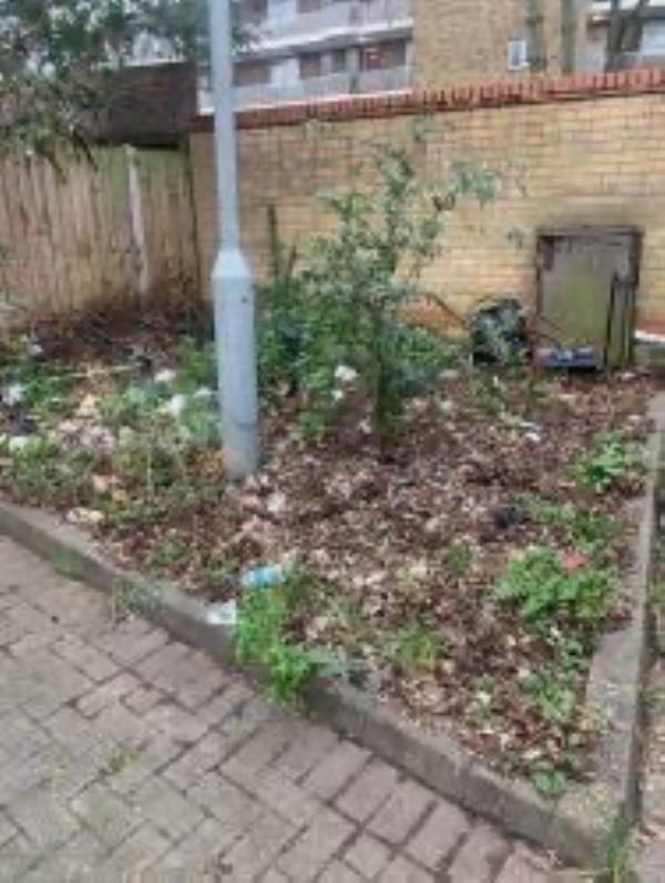 Flytipping / litter reported in shrub area -88 Grove Street, London, SE8 3AA