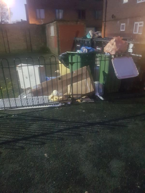 Overflowing bins, and discarded junk, thats been accumulating since Christmas.-6 Lowe Avenue, London, E16 1QG