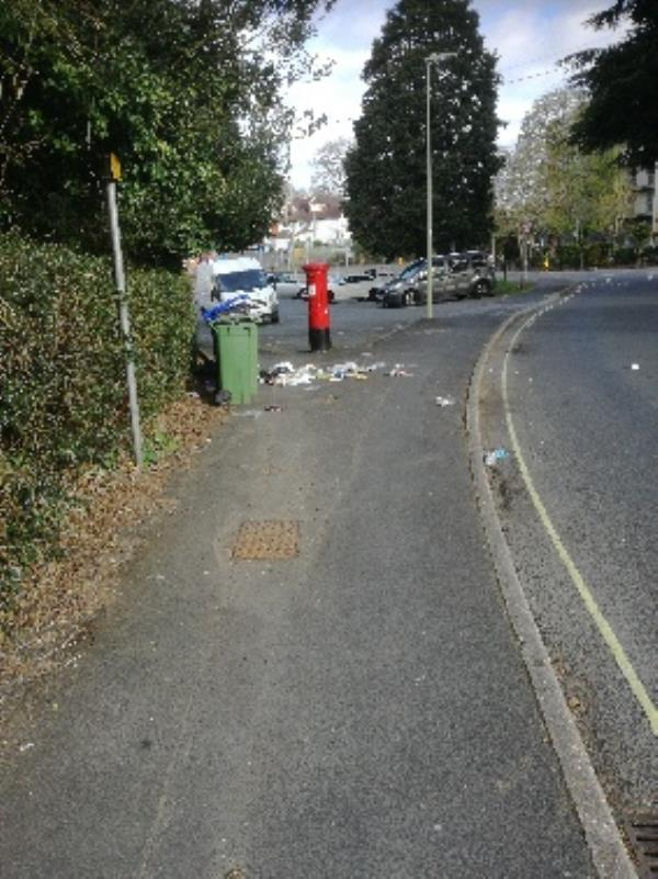 Wheely bin over full-3 Salisbury Road, Farnborough, GU14 7AN