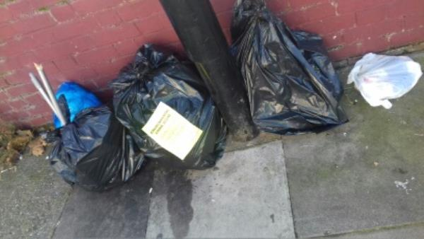 4 bag's of domestic wastes dumped opposite 16 Croydon junction with Barking Road -16 Croydon Road, London, E13 8ET