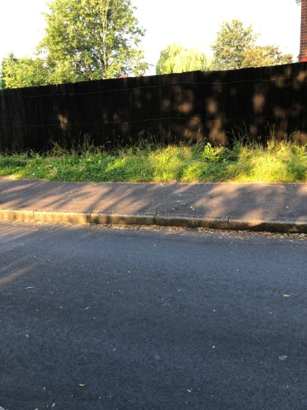 At the side of 98 Wallace Rd there is a small grass verge in School Drive. The grass needs cutting and is always missed off the program, can we add it please so it gets cut with the rest of the grass cutting in the area.  -98 Wallace Road, Bilston, WV14 8BS
