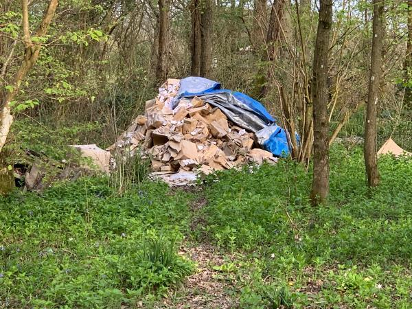 Commercial waste, this has been reported before. Plastic and cardboard. A business operates here doing mail order so should be disposing of rubbish correctly not dumping in the woods  Happy to meet an inspector and show them where this is-Unnamed Road, Billingshurst RH14, UK