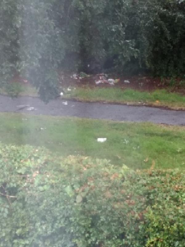 litter in alleyway between Lansdowne road and Portland gardens which leads to Park lane.-121 Park Lane, Reading, RG30 4QH