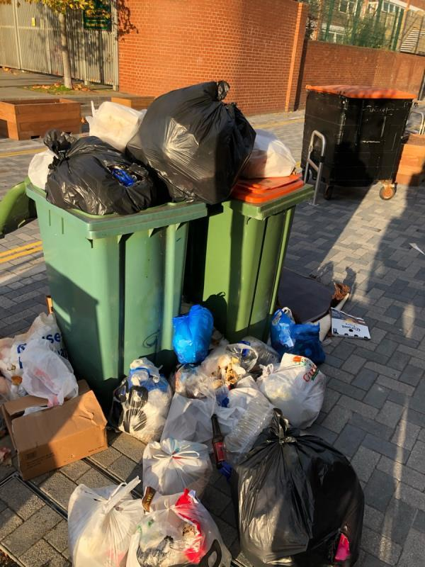 Over flowing bins -169 Forest Lane, London, E7 9BB
