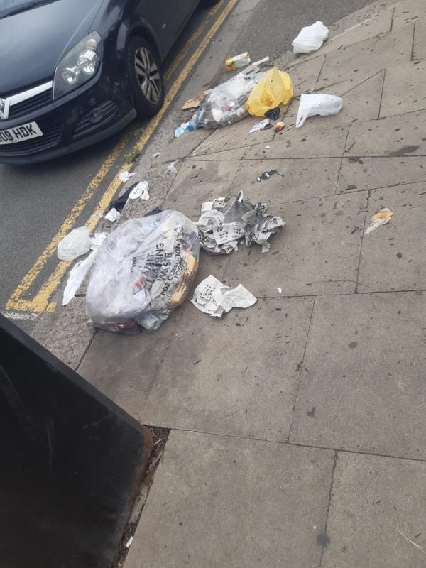 Rubbish left outside park bin-8 Cheltenham Gardens, London E6 3DH, UK
