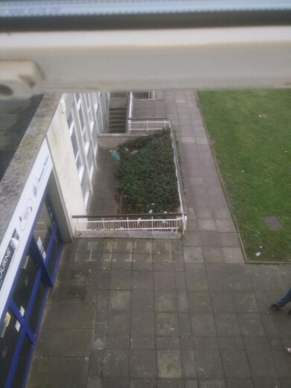 planted area by grovevrd public entrance needs litter picking - idverde-47 Grove Road, Eastbourne, BN21 4