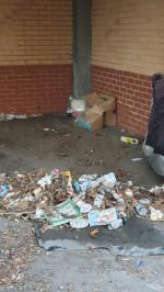 Rubbish in a parking spot  image 1-113 Angelica Drive, London, E6 6NT