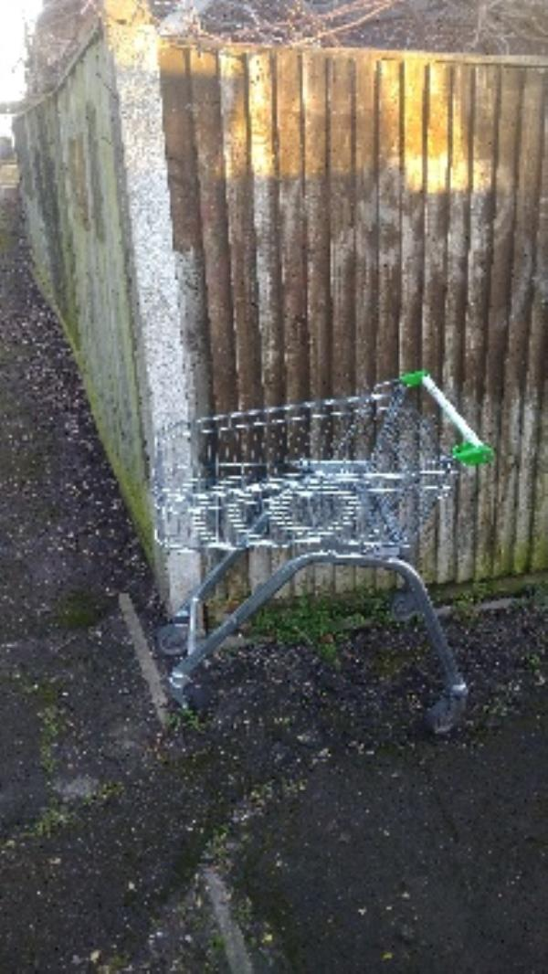 Flytipped trolley no evidence taken -25 Ambrook Road, Reading, RG2 8SL