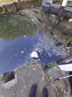 Litter bins in this area overflowing not just this one, rubbish in the locks and on the weir. Street drinkers sitting on the locks leaving rubbish around area is a mess  image 1-89 Charles Bennion Walk, Leicester, LE4 5HU
