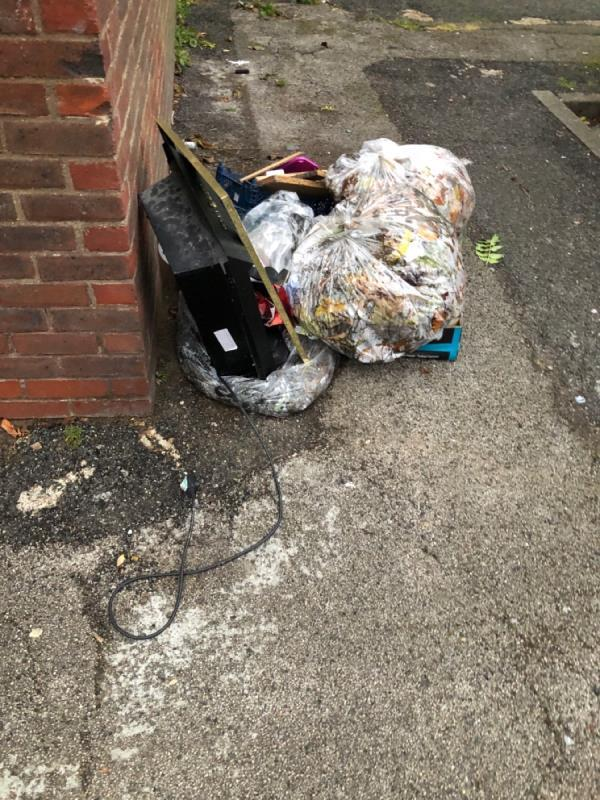 Various rubbish at this location for the umpteenth time-24 Walnut Gardens, London E15 1NE, UK