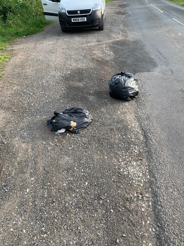 Two black bin bags in lay-by then on opposite side of road a trail of littler through the grass -Oakfield House, Chester Zoological Gardens, Caughall Rd, Chester CH2 1LH, United Kingdom