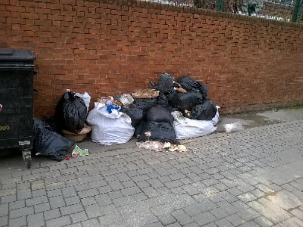Fly tip Khun Way off Forest Lane E7-169 Forest Lane, London, E7 9BB