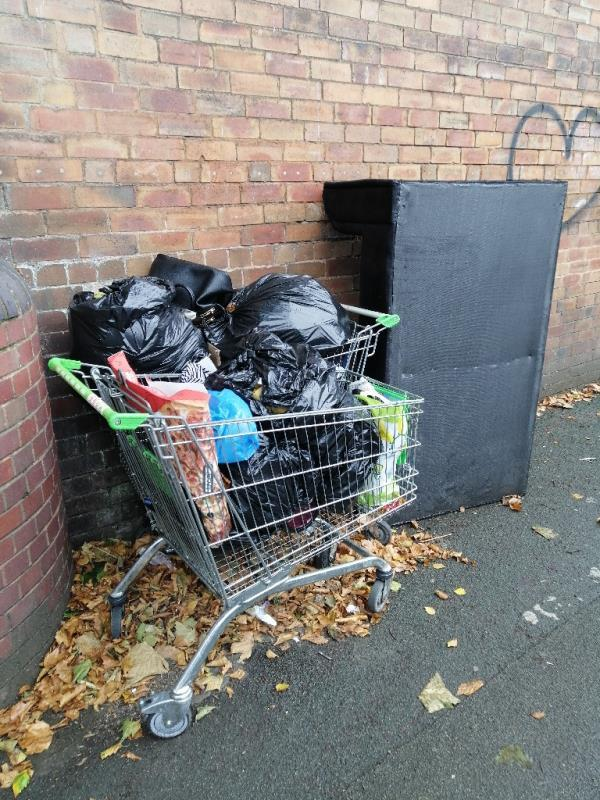 Sofa and bags of rubbish, shopping cart-Newhampton Arts Centre Dunkley Street, Wolverhampton, WV1 4AN