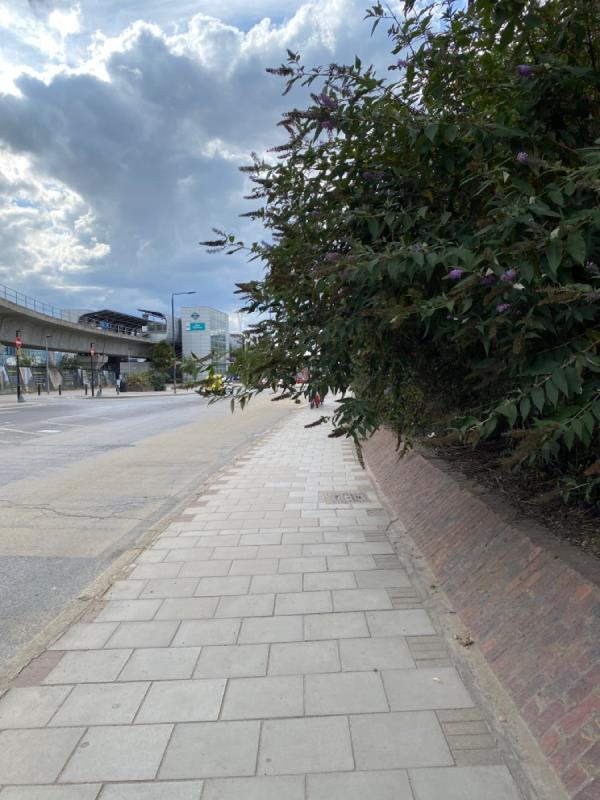 Branches have grown across the pavement on the north side of north woolwich road meaning that you have to walk into the road to get past.  This is EXCEPTIONALLY dangerous and needs to be dealt with ASAP -4 Ramsgate Cl, Royal Docks, London E16 1UE, UK