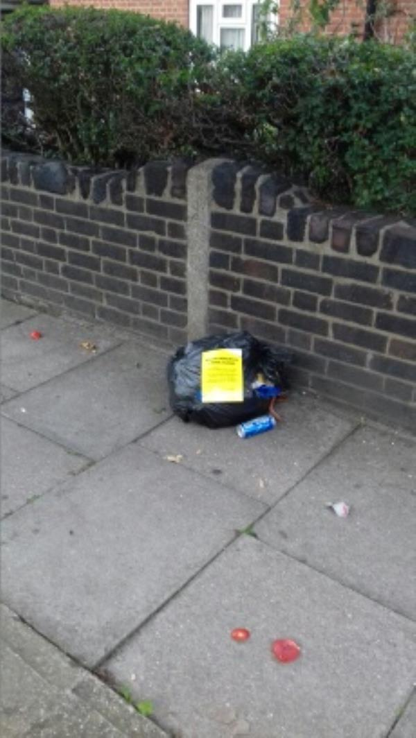 A bag of domestic wastes dumped outside 34 Palmer Road -43 Palmer Road, London, E13 8NU