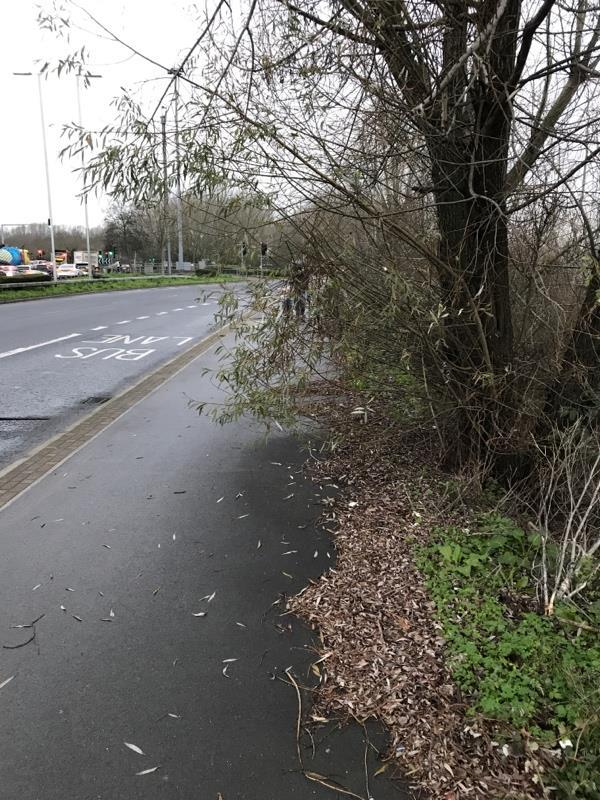 Over grown vegetation from Bennet Road to Imperial Way needs cutting back-40 Bennet Rd, Reading RG2 0QX, UK