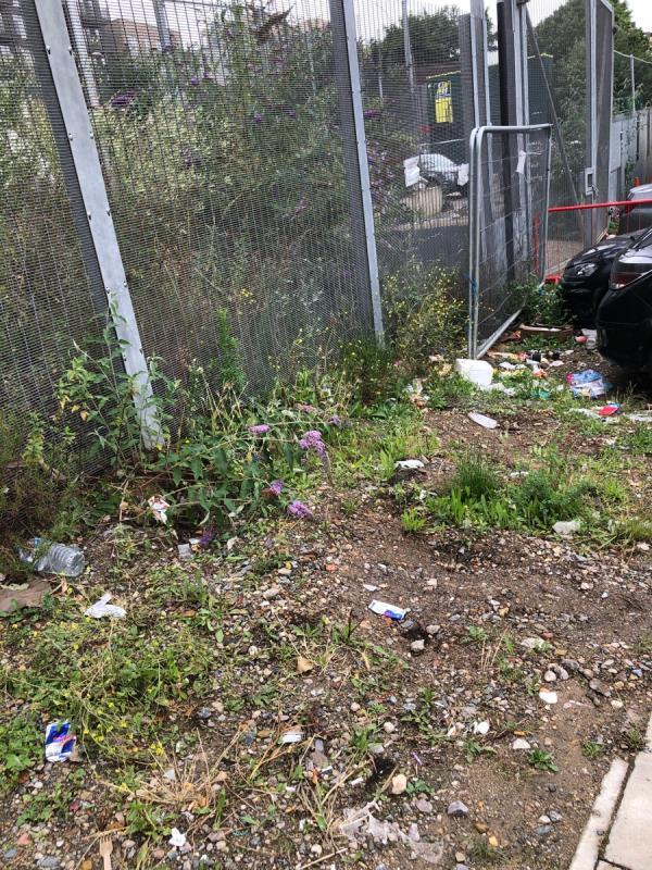 Litter on grass area in front of and behind barrier -473 Montfichet Rd, London E15 1AZ, UK