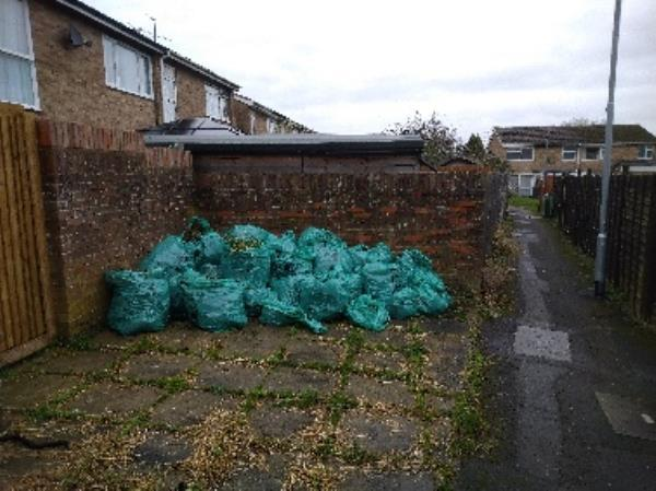 Lots of green bags need to be taken (too many and too far from van to move by myself needs  a few ppl and maybe a wheel barrow l-13 Quantock Avenue, Reading, RG4 6QF