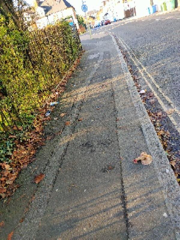 litter along fence on queens road image 1-39 Queens Road, Aldershot, GU11 3JG