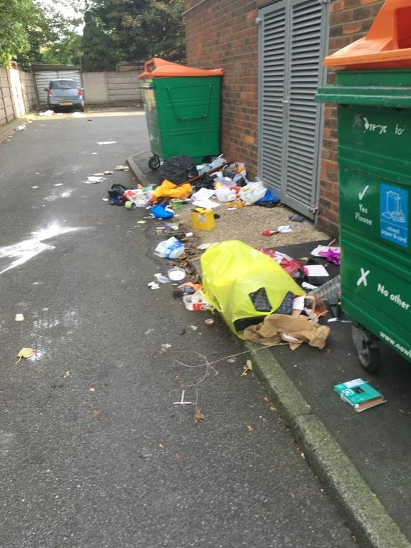 FAO enforcement. We had a visit from a male and female with torches. At 4am! They spent an hour going through our bins. This is becoming a regular problem. They target the block bins at 19-51 as well. Can newham lock the recycling bins? Our privacy is important to us and look at the mess they left. Can ASB do something to stop these people? -4a Odessa Road, London, E7 9BH