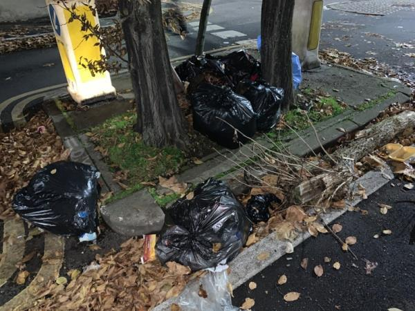 I complained about this before and was notified it had been cleared....?! -184 Kempton Road, London, E6 2PB