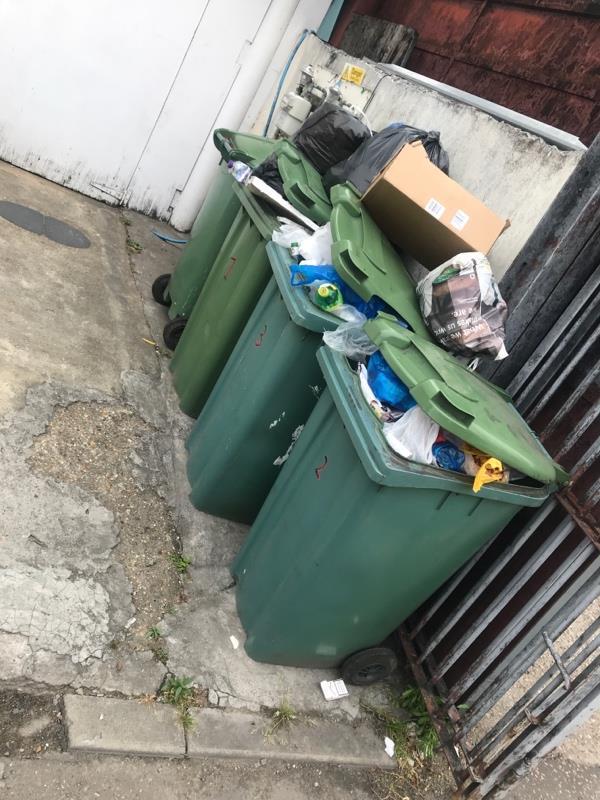 Overflowing bins-11 Nursery Lane, London, E7 8BL
