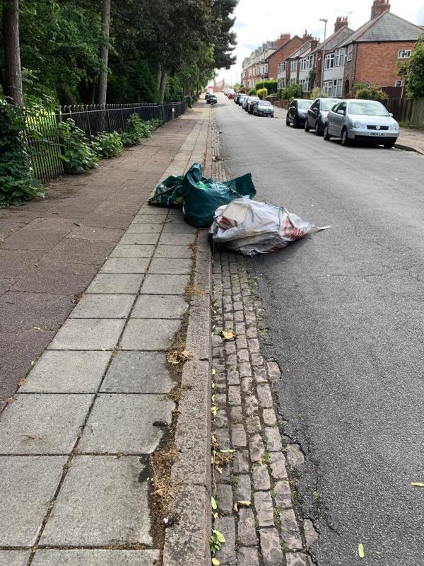 Dumped garden stuff. On the road. Needs sorting as this could cause an accident. -46 Wentworth Road, Leicester, LE3 9RD