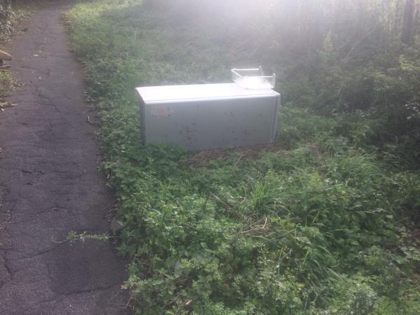 Mayeswood Road  Footpath Side Of Grove Park Cemetary. Please clear a fridge -214 Mayeswood Road, London, SE12 9SB