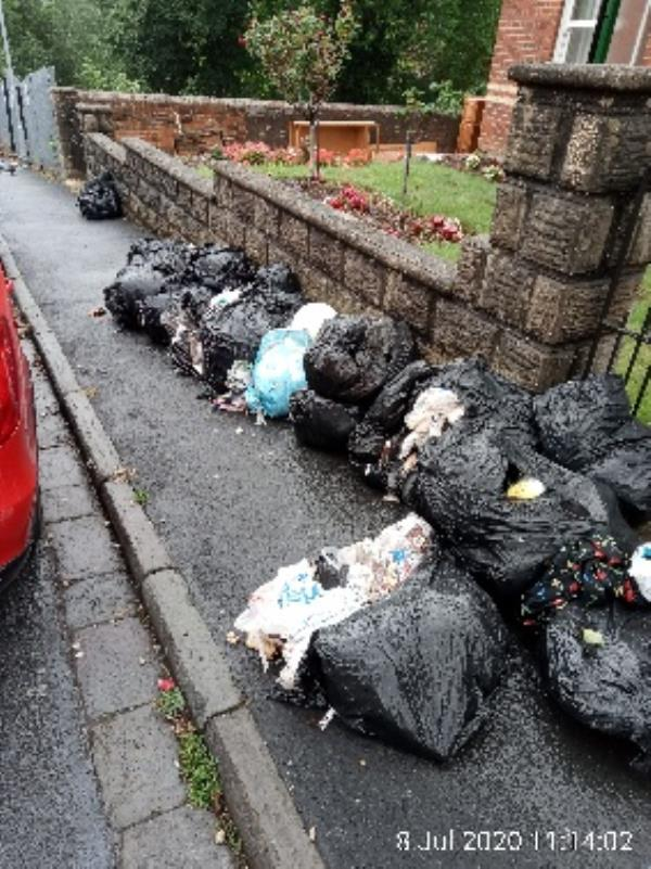 Approx 30 bags of rubbish near 168 Cholmely Road, spilling out on to footoath. Have gone through baags but no evidence. Please clear. -168 Cholmeley Road, Reading, RG1 3LX